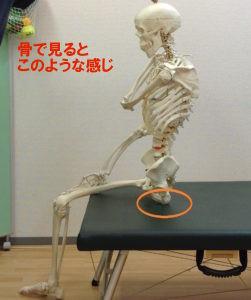 骨盤に良い座り方